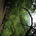 Veľký Peterklín